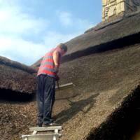 Dachy z trzciny konserwacja