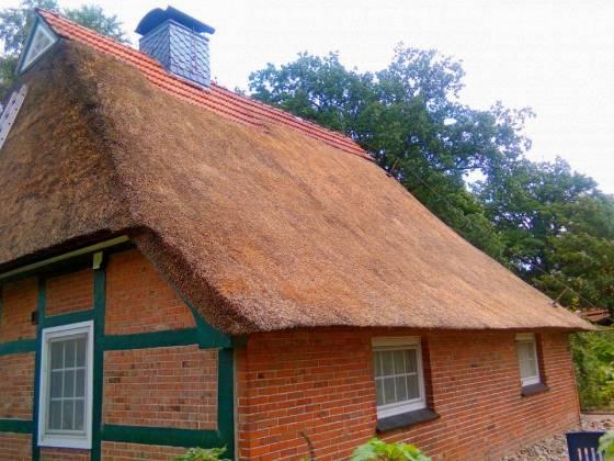 Dachy z trzciny zalety dachów